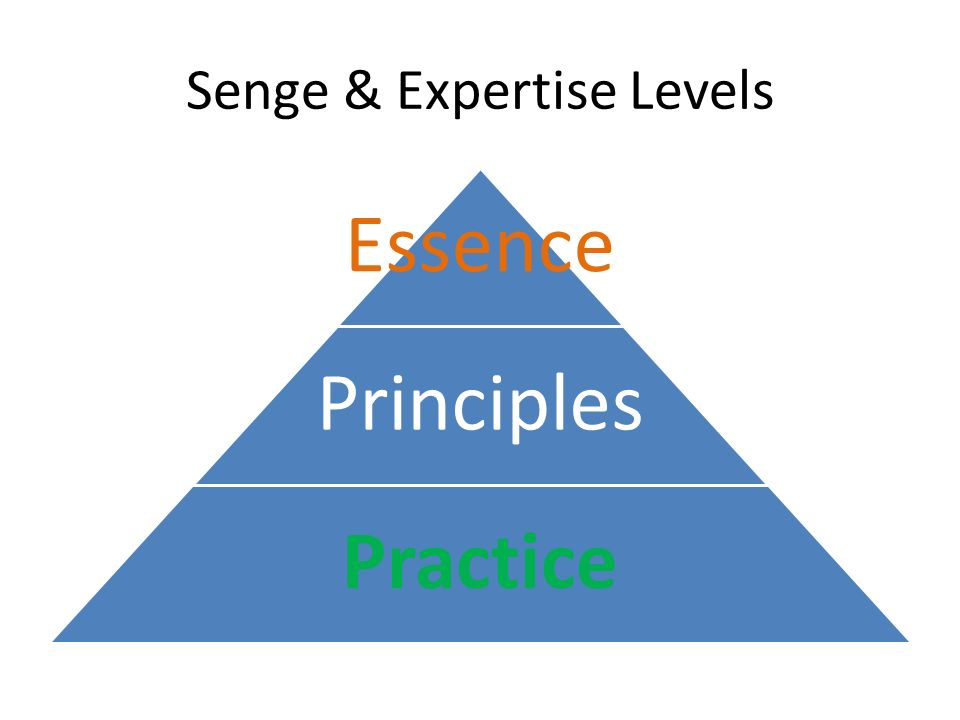 Senge & Expertise Levels Essence Principles Practice