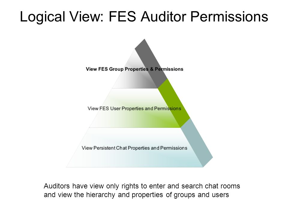 Logical View: FES Auditor Permissions View FES Group Properties & Permissions View FES User Properties and Permissions View Persistent Chat Properties and Permissions Auditors have view only rights to enter and search chat rooms and view the hierarchy and properties of groups and users