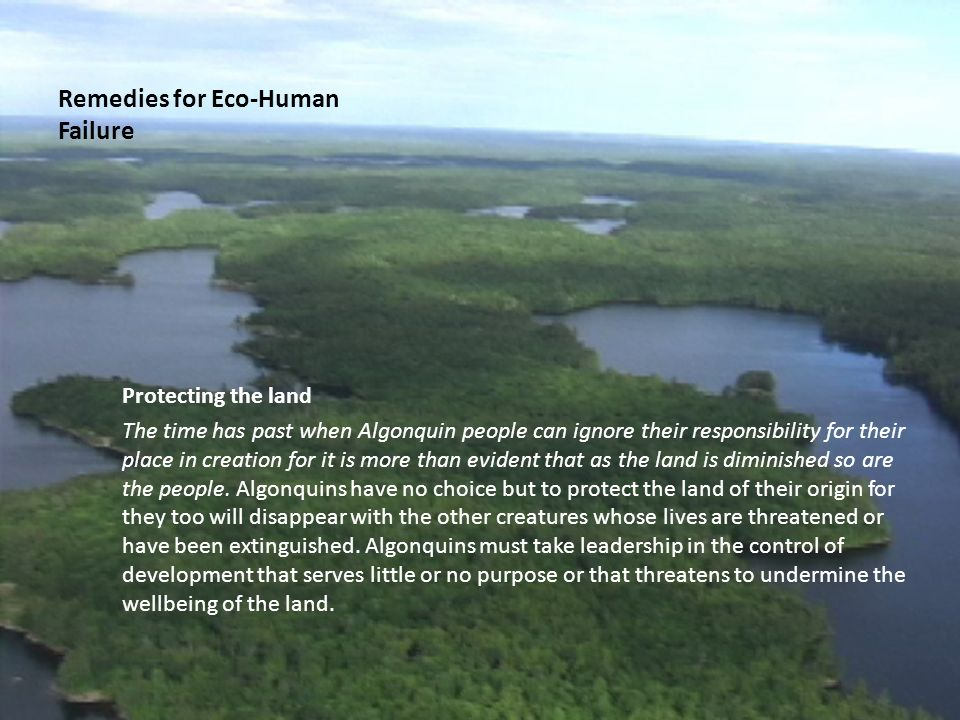 Remedies for Eco-Human Failure Protecting the land The time has past when Algonquin people can ignore their responsibility for their place in creation for it is more than evident that as the land is diminished so are the people.