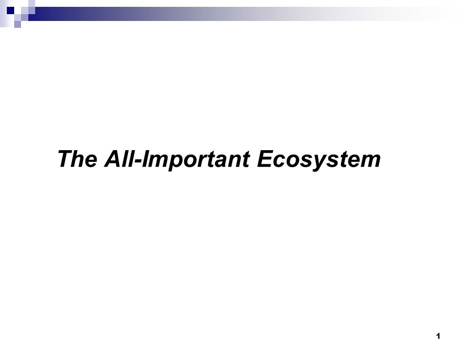 The All-Important Ecosystem 1