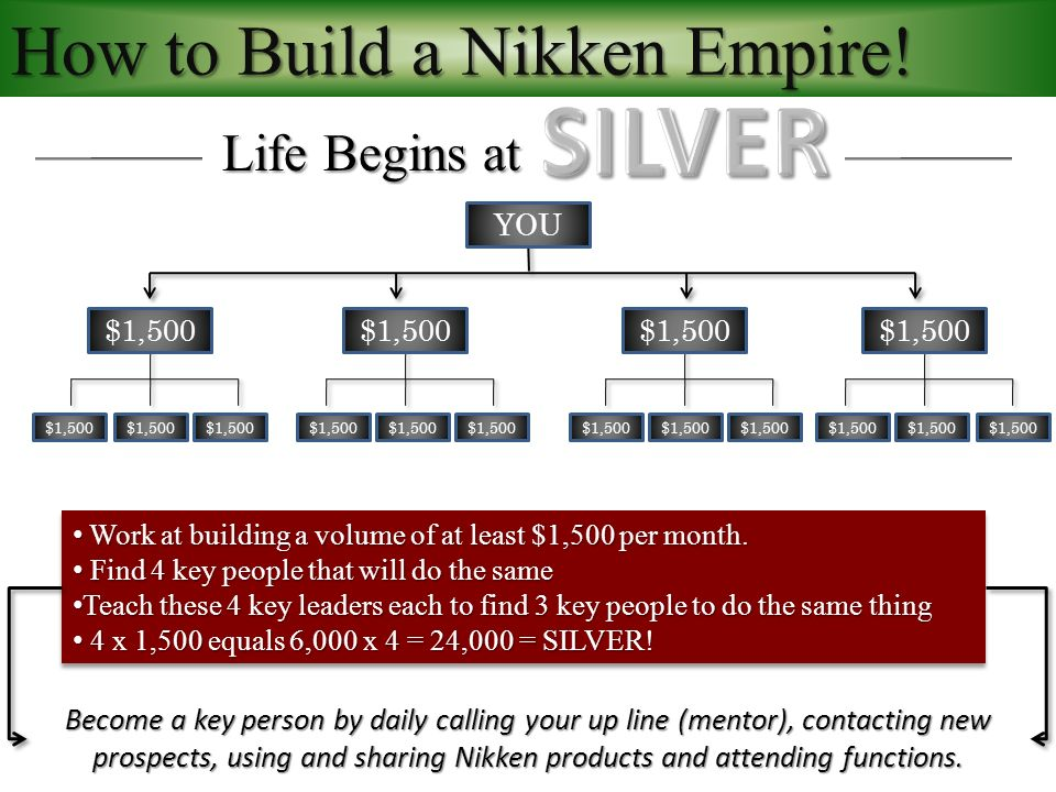 How to Build a Nikken Empire.