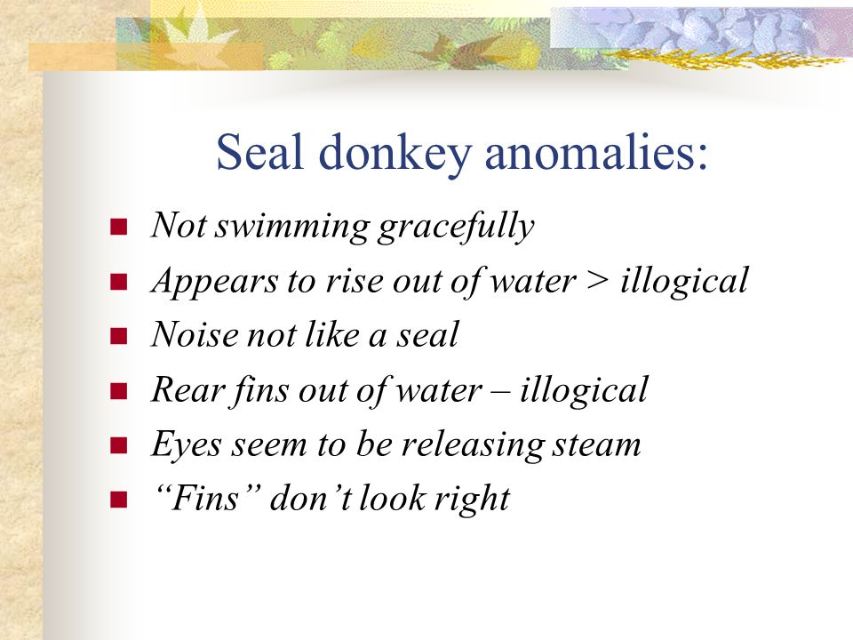 Seal donkey anomalies: Not swimming gracefully Appears to rise out of water > illogical Noise not like a seal Rear fins out of water – illogical Eyes seem to be releasing steam Fins dont look right