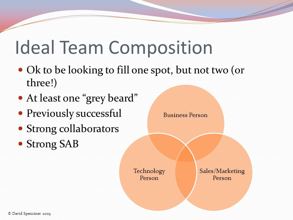 Ideal Team Composition Ok to be looking to fill one spot, but not two (or three!) At least one grey beard Previously successful Strong collaborators Strong SAB Business Person Sales/Marketing Person Technology Person © David Spenciner 2009