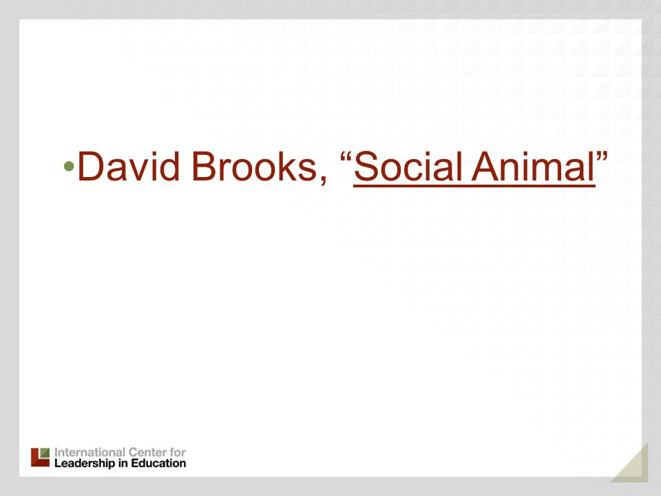 David Brooks, Social Animal