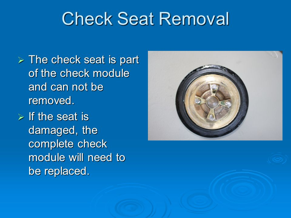 Check Seat Removal The check seat is part of the check module and can not be removed.