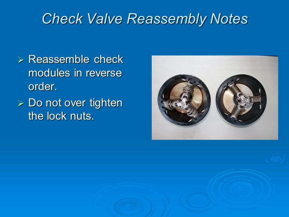 Check Valve Reassembly Notes Reassemble check modules in reverse order.