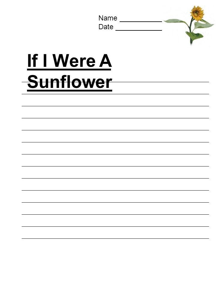 Name ______________ Date ________________ If I Were A Sunflower