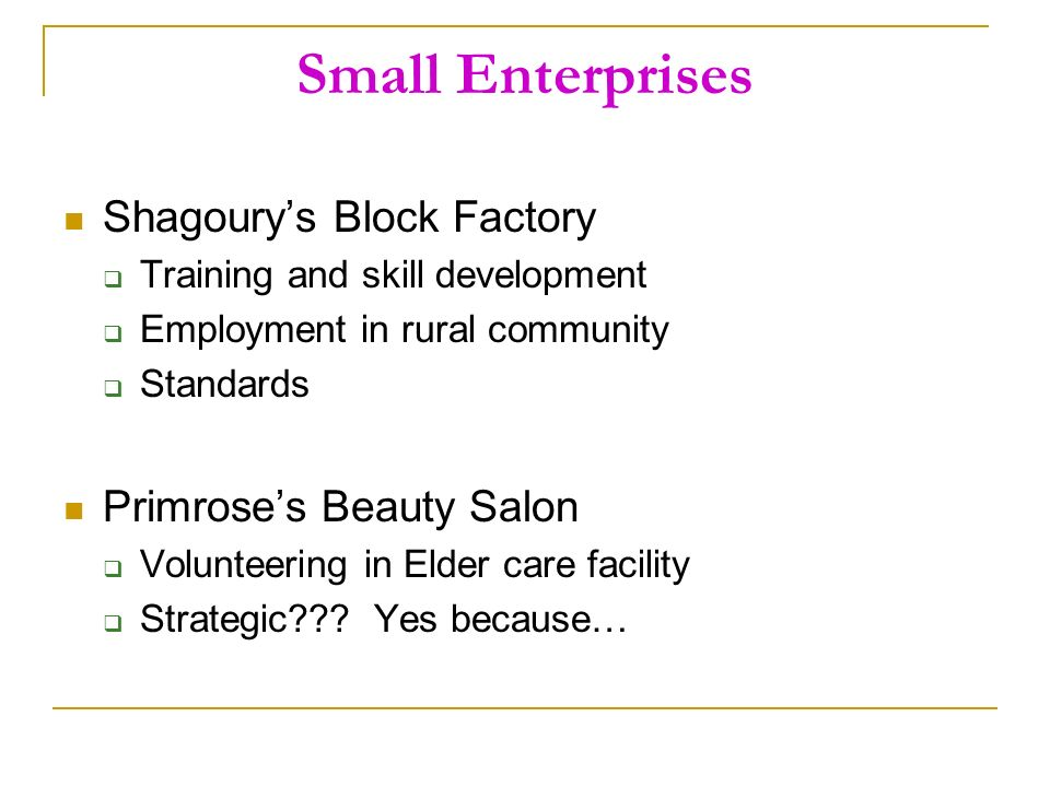 Small Enterprises Shagourys Block Factory Training and skill development Employment in rural community Standards Primroses Beauty Salon Volunteering in Elder care facility Strategic .