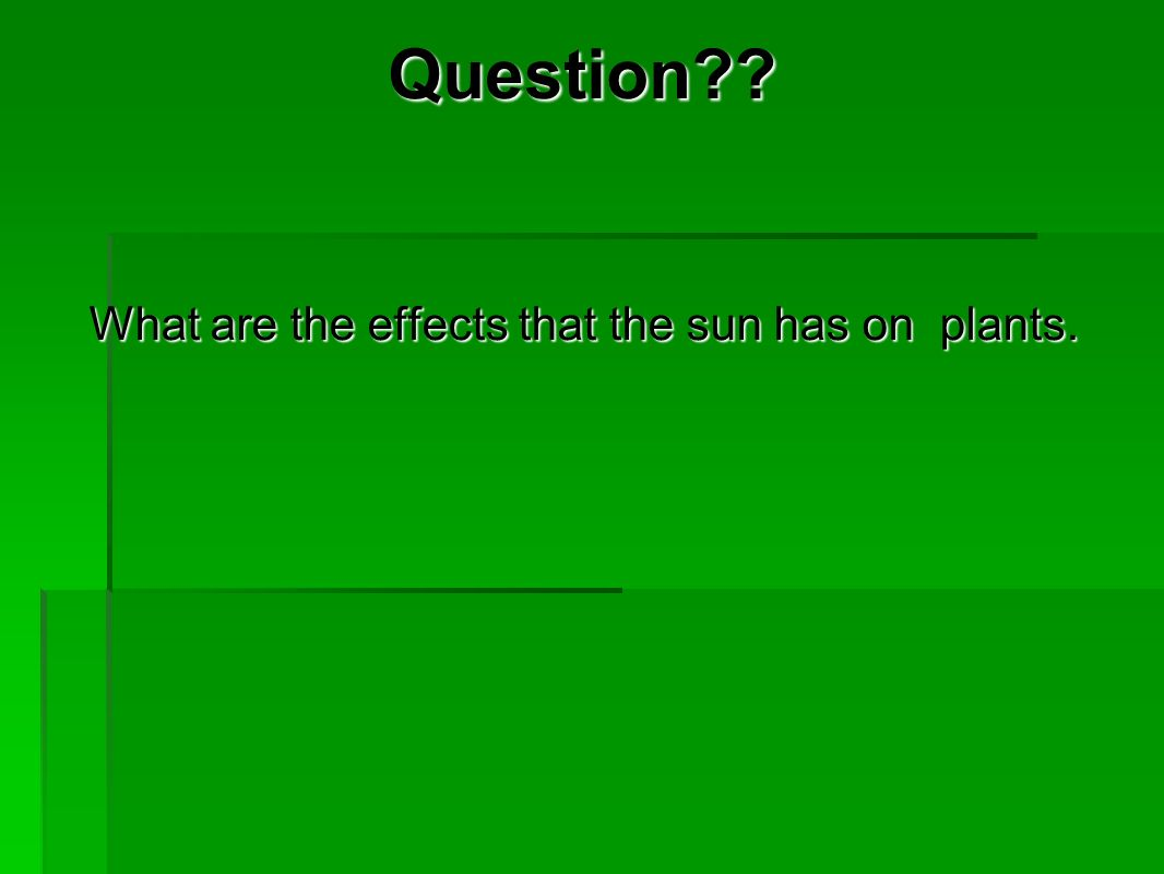 Question . What are the effects that the sun has on plants.