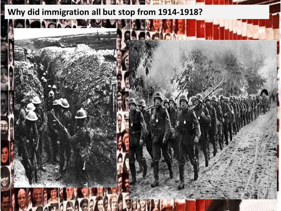 Why did immigration all but stop from