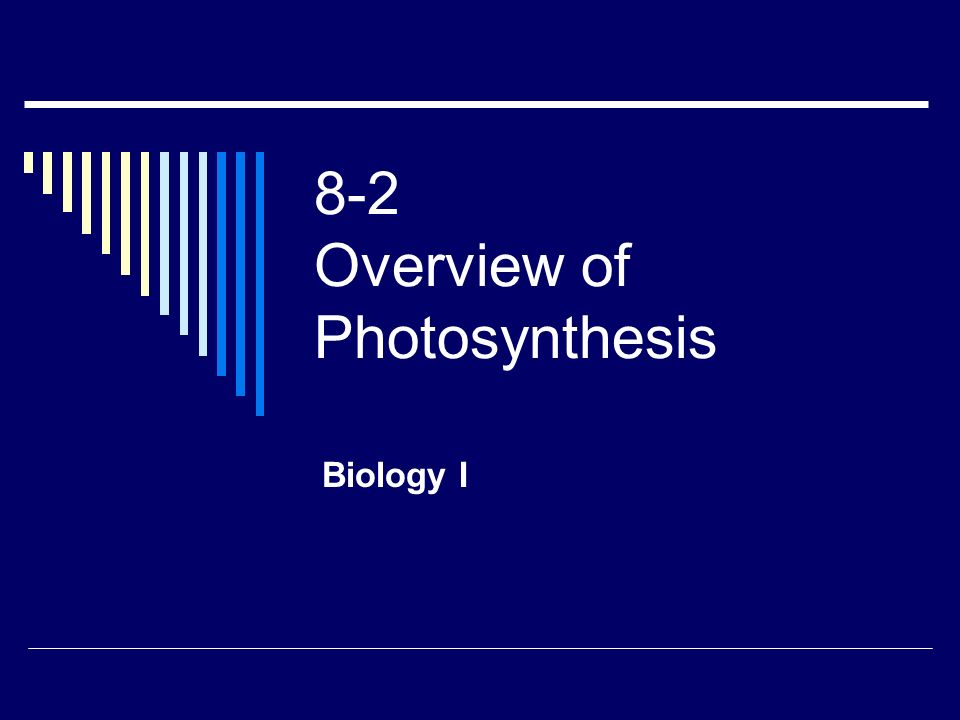 8-2 Overview of Photosynthesis Biology I