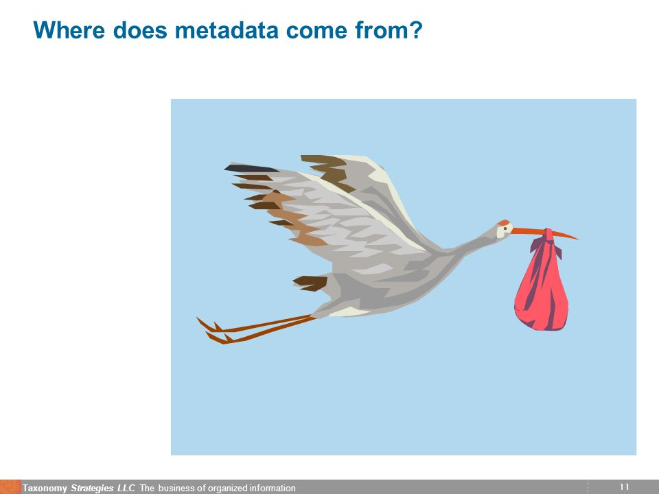 11 Taxonomy Strategies LLC The business of organized information Where does metadata come from