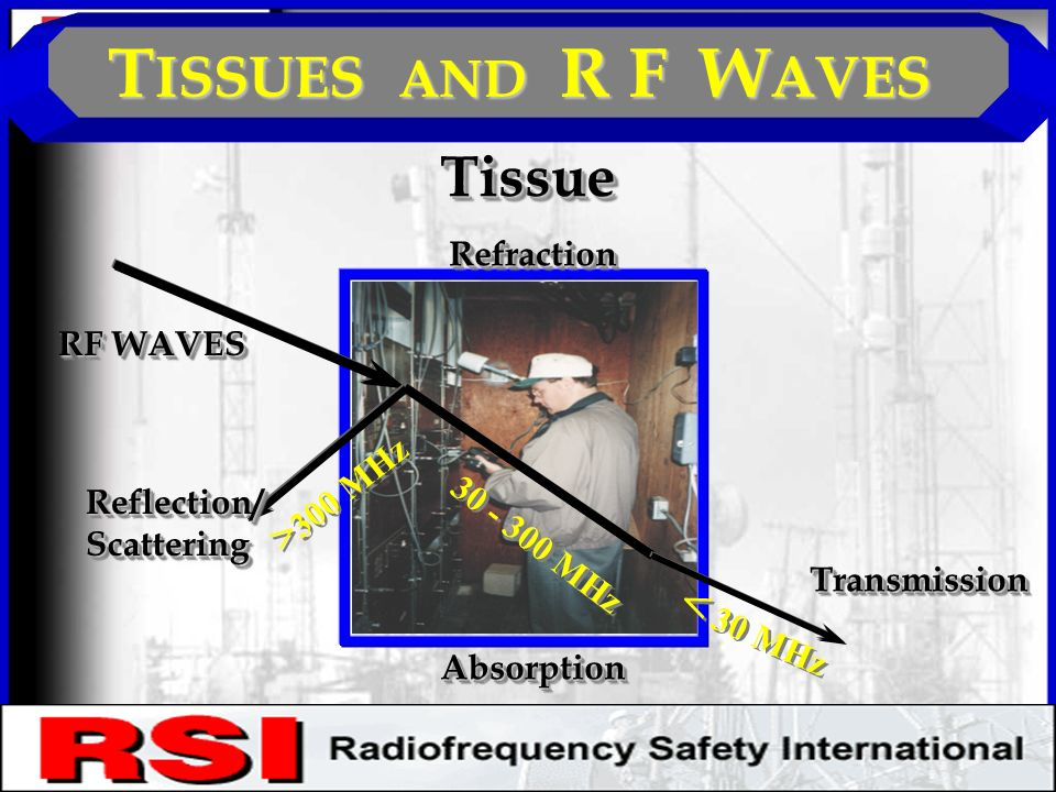 T ISSUES AND R F W AVES TissueTissue RF WAVES Reflection/ScatteringReflection/Scattering RefractionRefraction AbsorptionAbsorption TransmissionTransmission > 300 MHz MHz < 30 MHz CONFIDENTIAL R.S.I.