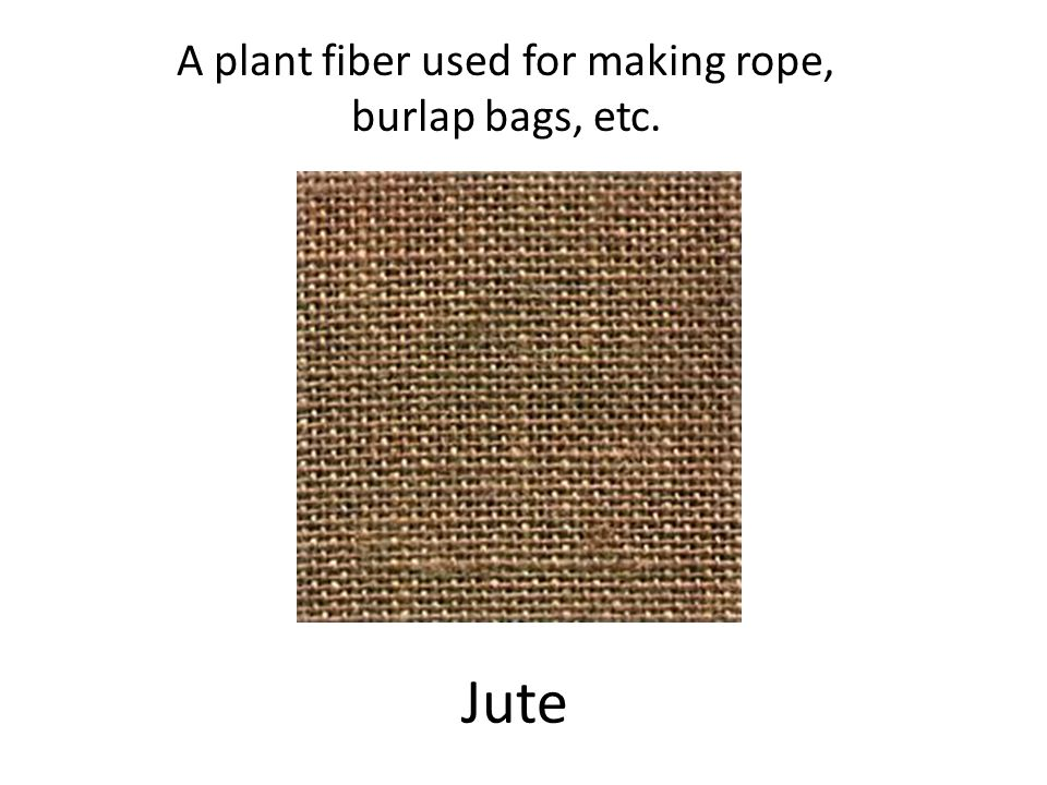 Jute A plant fiber used for making rope, burlap bags, etc.