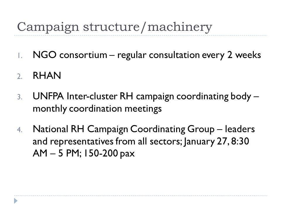 Campaign structure/machinery 1. NGO consortium – regular consultation every 2 weeks 2.
