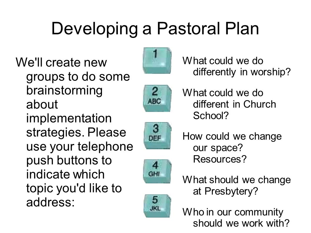 Developing a Pastoral Plan We ll create new groups to do some brainstorming about implementation strategies.