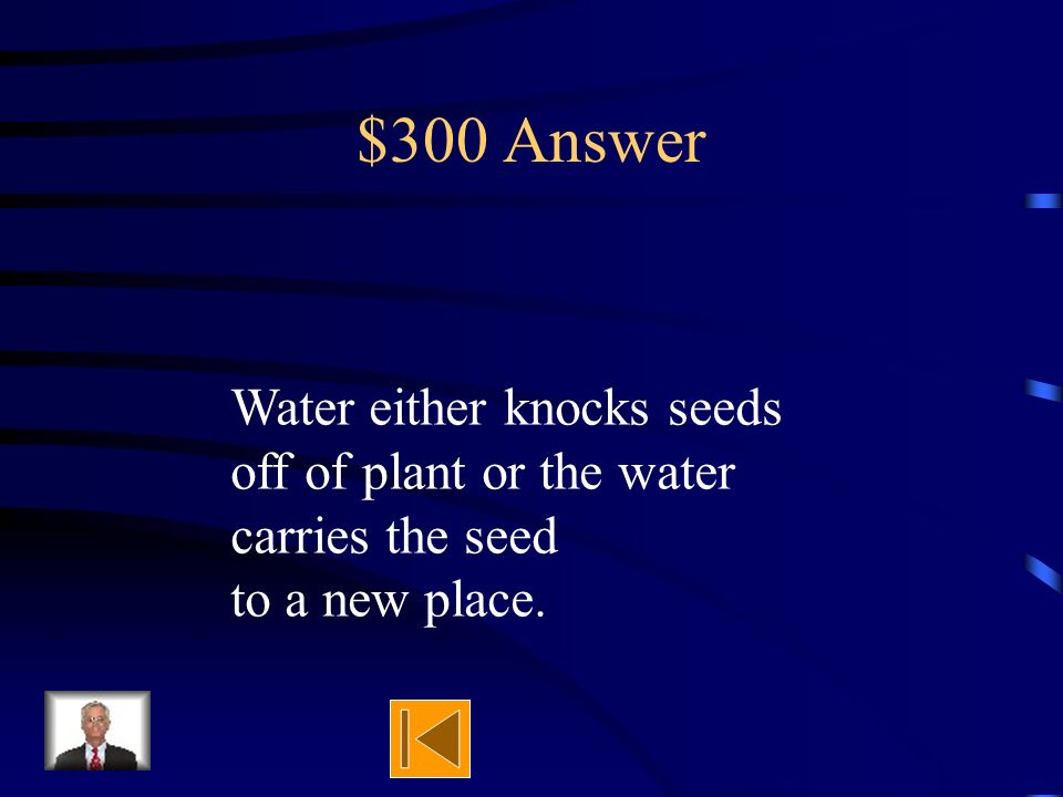 $300 Question Explain how water disperses seeds