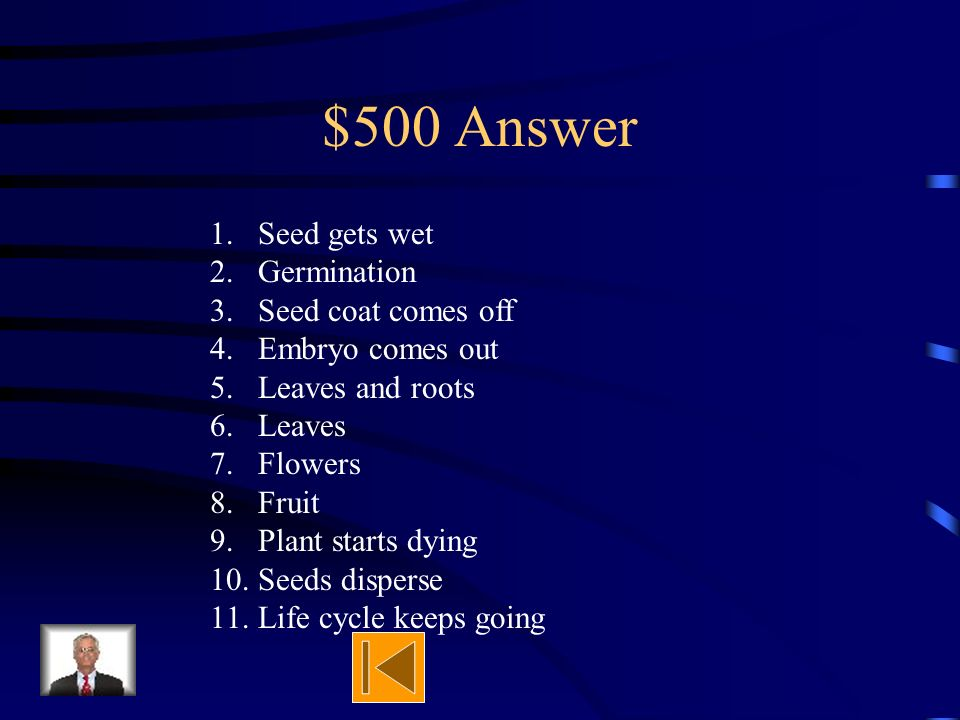 $500 Question Explain the whole life cycle of a lima bean. Start to finish