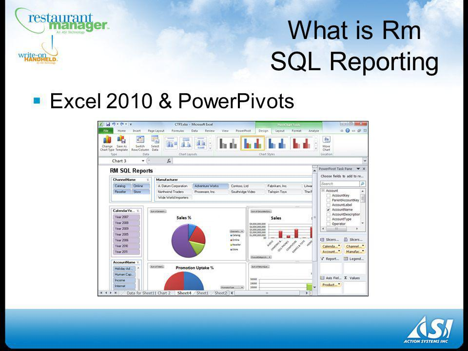 Excel 2010 & PowerPivots What is Rm SQL Reporting