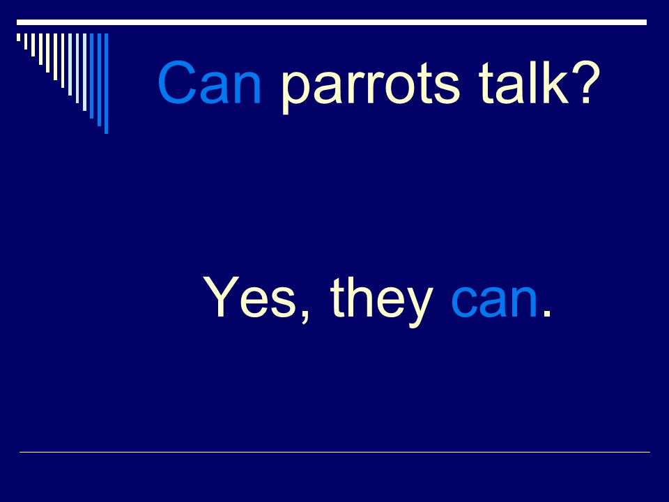 Can parrots talk Yes, they can.