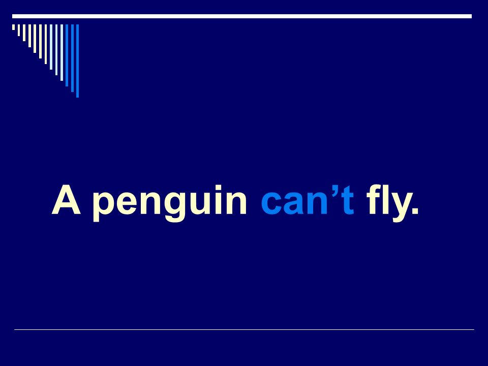 A penguin cant fly.