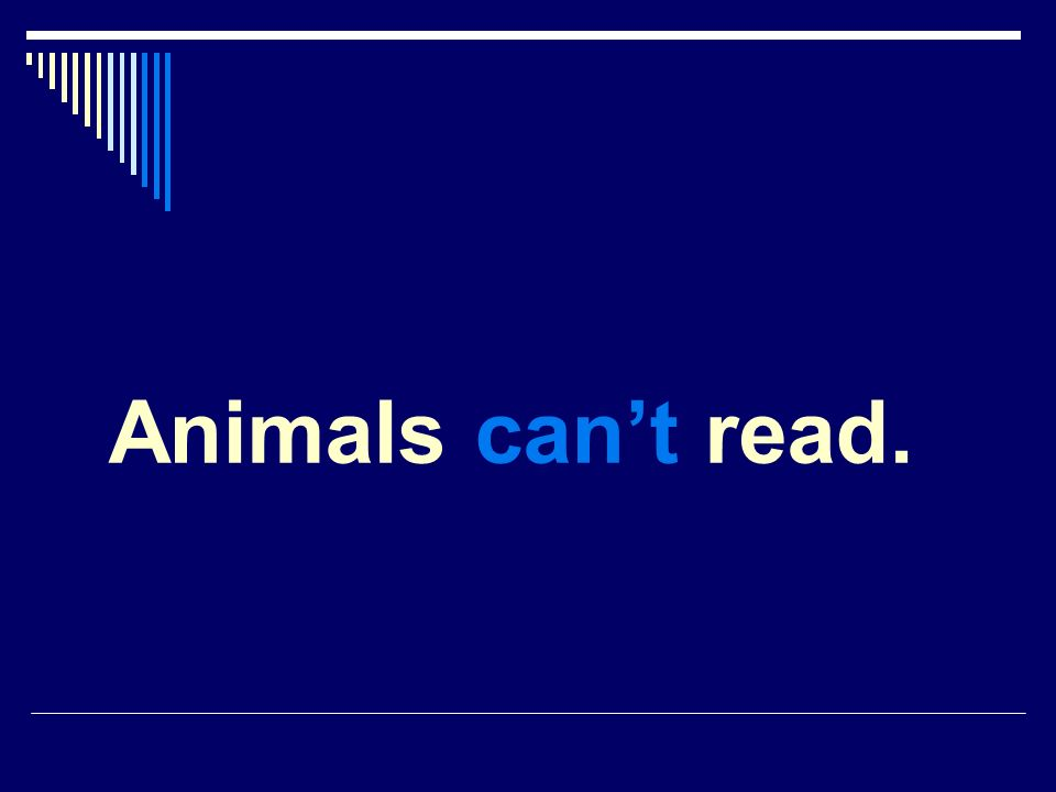 Animals cant read.