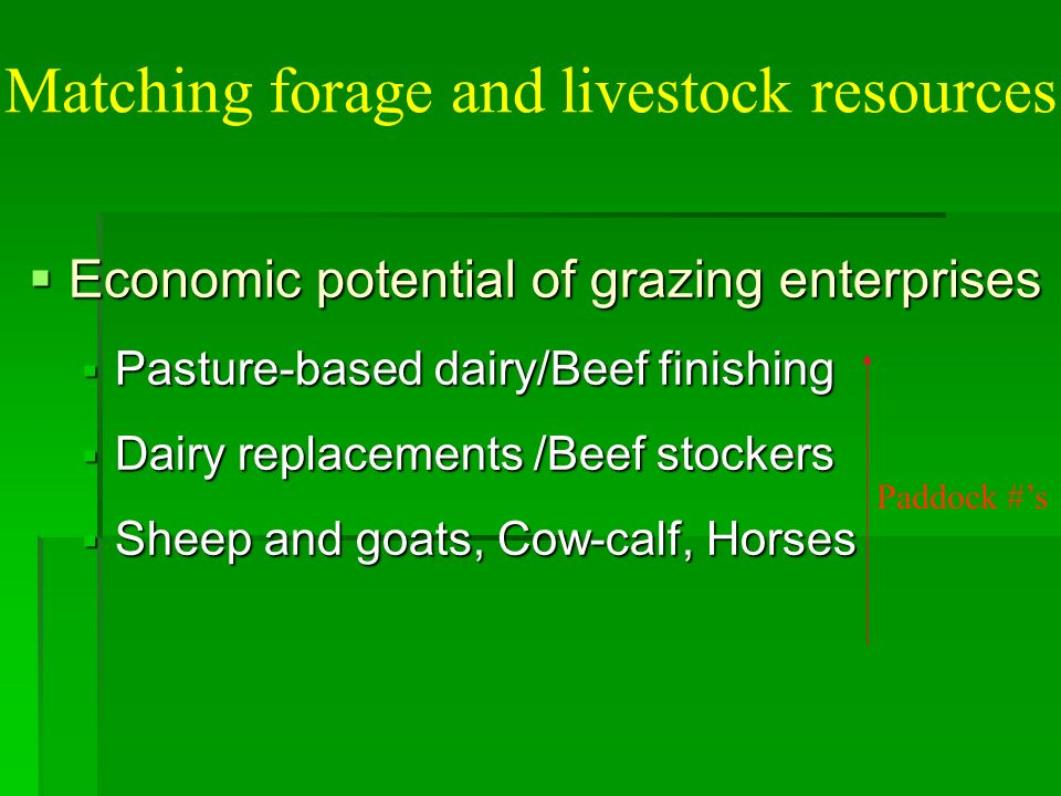 Matching forage and livestock resources Economic potential of grazing enterprises Economic potential of grazing enterprises Pasture-based dairy/Beef finishing Pasture-based dairy/Beef finishing Dairy replacements /Beef stockers Dairy replacements /Beef stockers Sheep and goats, Cow-calf, Horses Sheep and goats, Cow-calf, Horses Paddock #s
