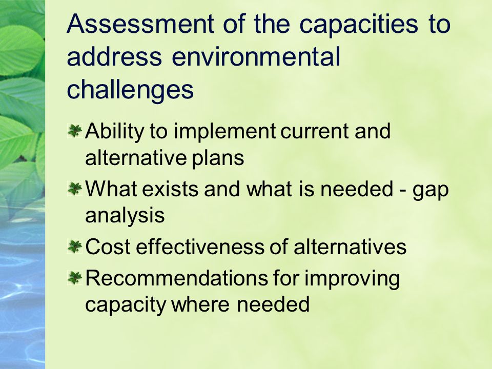 Assessment of the capacities to address environmental challenges Ability to implement current and alternative plans What exists and what is needed - gap analysis Cost effectiveness of alternatives Recommendations for improving capacity where needed