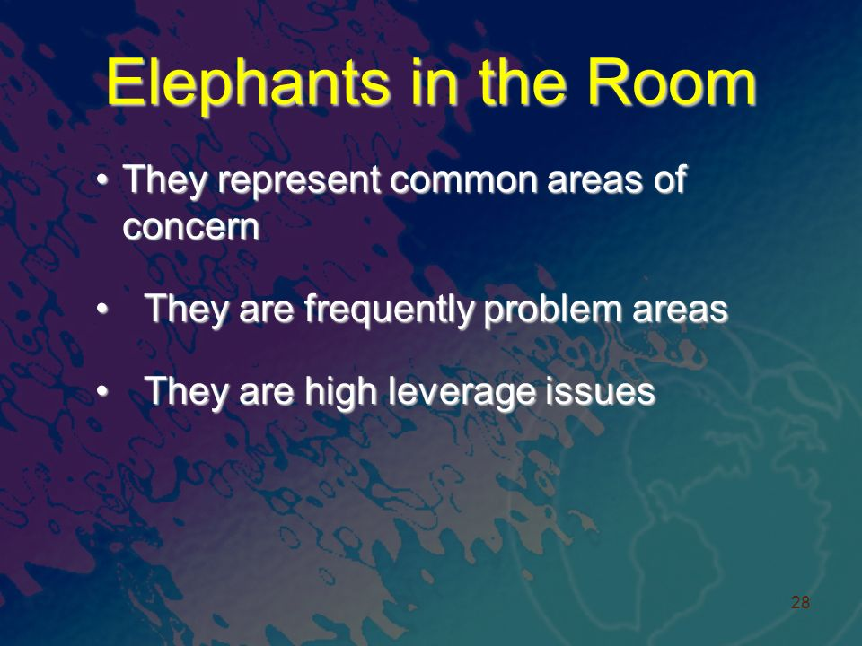 Elephants in the Room They represent common areas of concernThey represent common areas of concern They are frequently problem areas They are frequently problem areas They are high leverage issues They are high leverage issues 28
