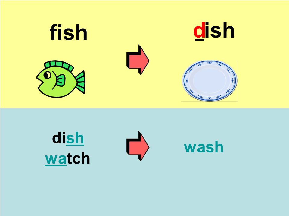 fish _ ish dish watch wash d
