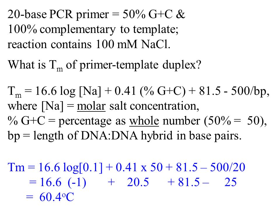 20-base PCR primer = 50% G+C & 100% complementary to template; reaction contains 100 mM NaCl.