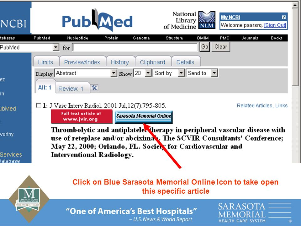 Click on Blue Sarasota Memorial Online Icon to take open this specific article