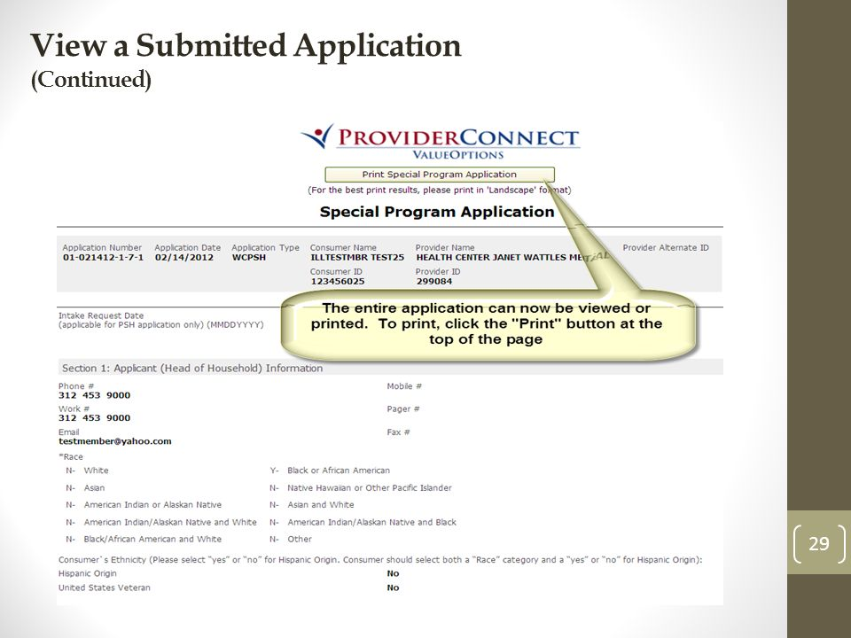 View a Submitted Application (Continued) 29