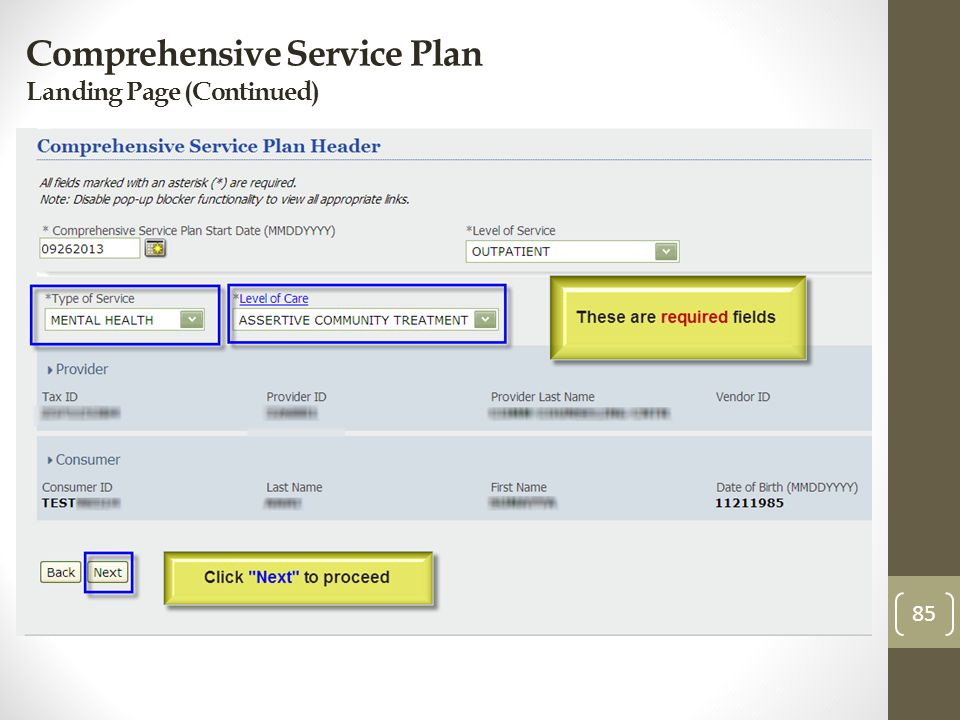 Comprehensive Service Plan Landing Page (Continued) 85