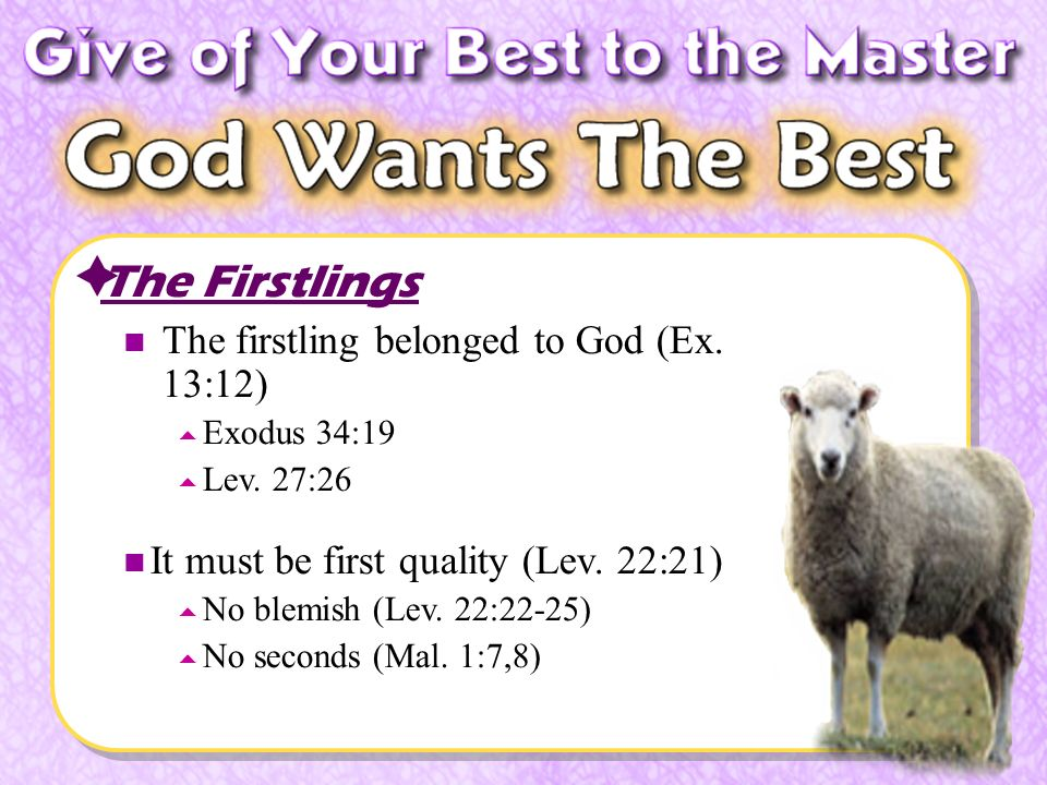 The Firstlings The firstling belonged to God (Ex. 13:12) Exodus 34:19 Lev.