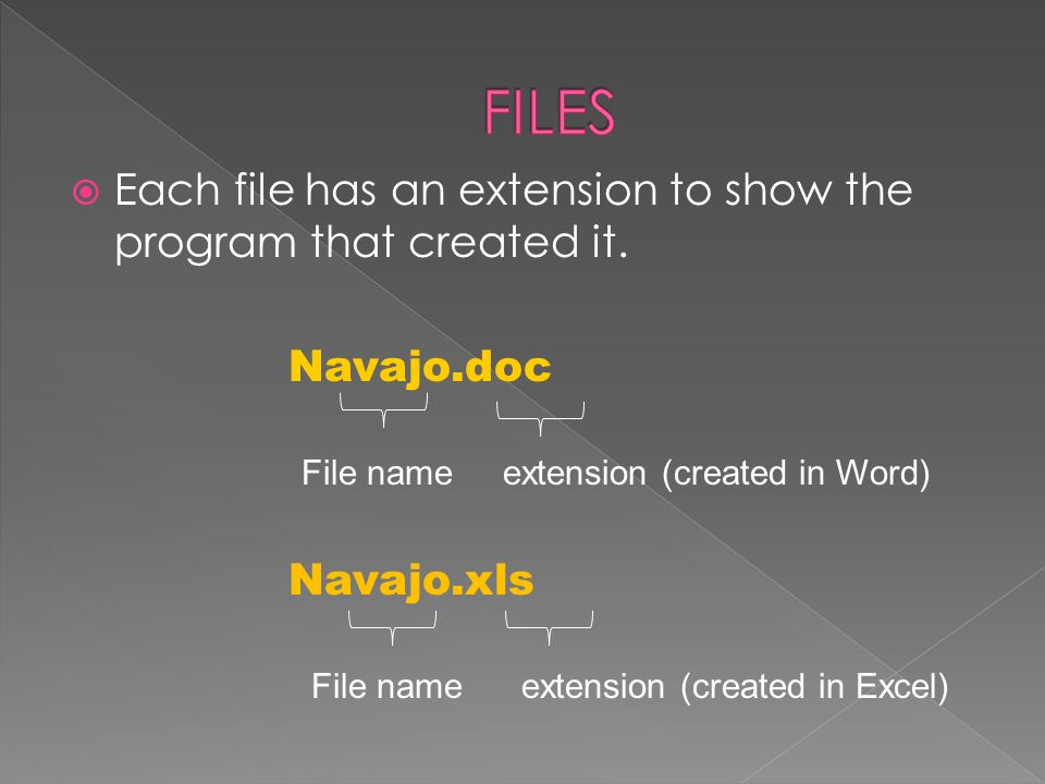 Each file has an extension to show the program that created it.