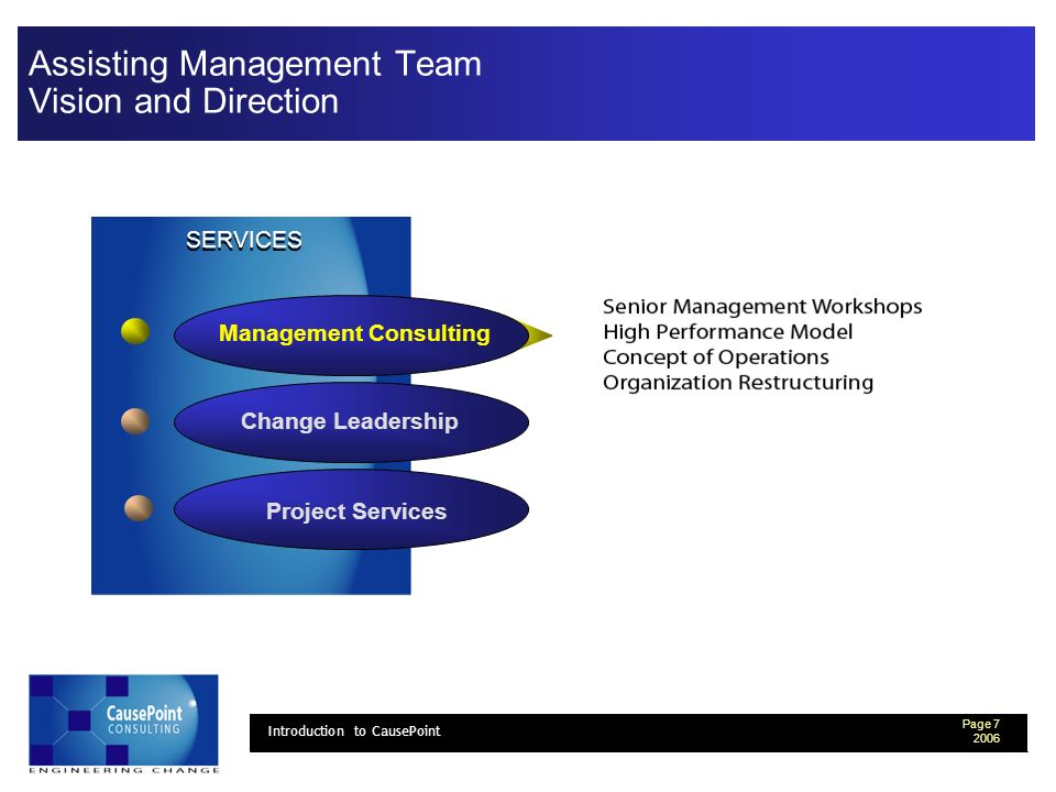 Page 7 2006 Introduction to CausePoint Assisting Management Team Vision and Direction Change Leadership Project Services Management Consulting SERVICES