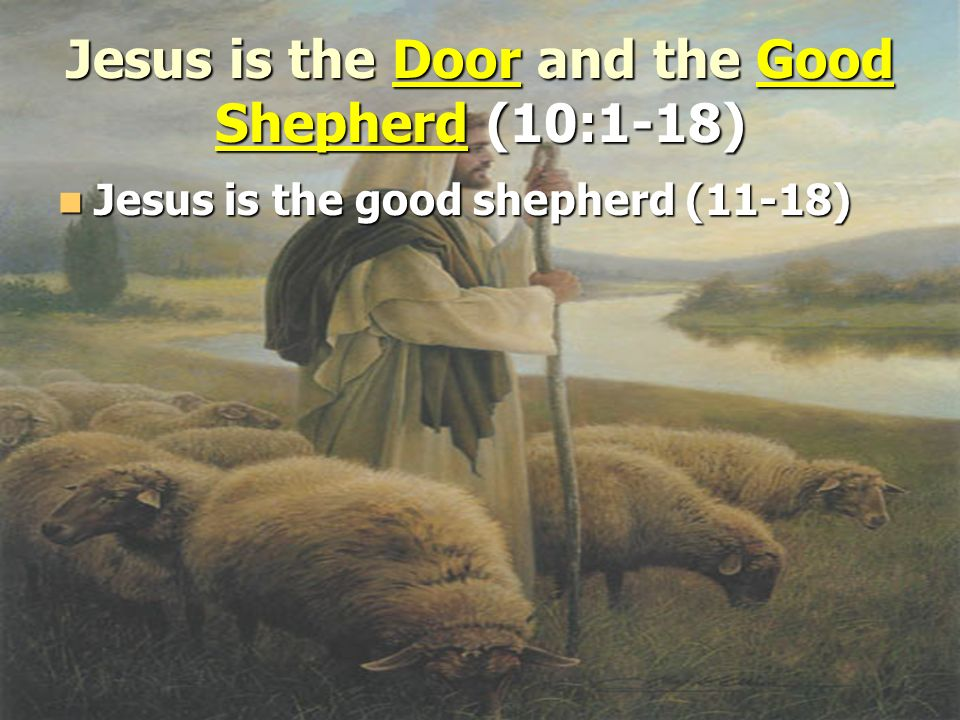 Jesus is the Door and the Good Shepherd (10:1-18) Jesus is the good shepherd (11-18) Jesus is the good shepherd (11-18)