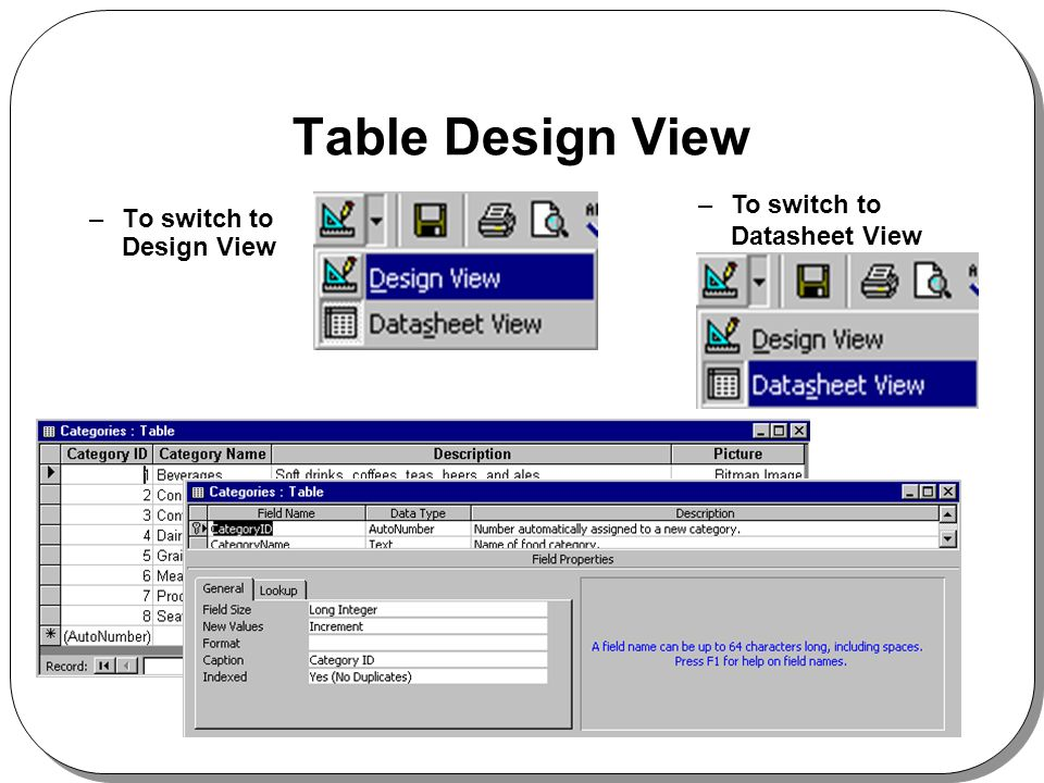 Table Design View –To switch to Design View –To switch to Datasheet View