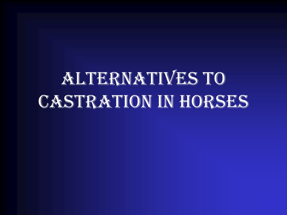 Alternatives to castration in horses