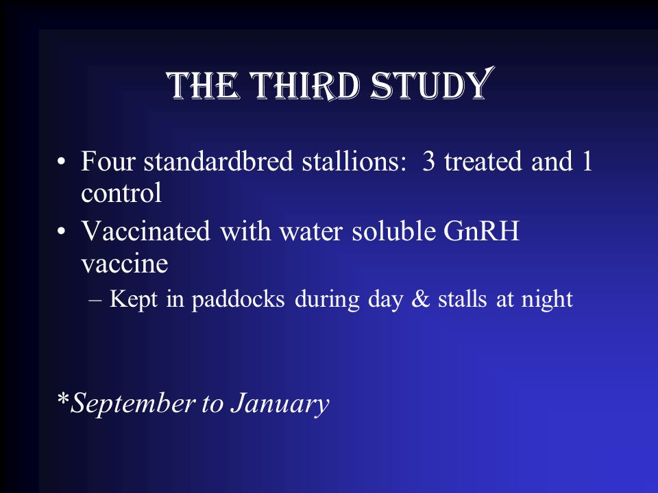 The Third Study Four standardbred stallions: 3 treated and 1 control Vaccinated with water soluble GnRH vaccine –Kept in paddocks during day & stalls at night *September to January