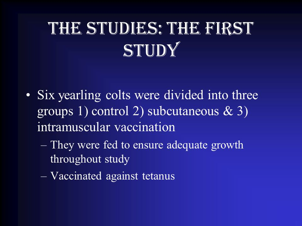 The studies: The First Study Six yearling colts were divided into three groups 1) control 2) subcutaneous & 3) intramuscular vaccination –They were fed to ensure adequate growth throughout study –Vaccinated against tetanus