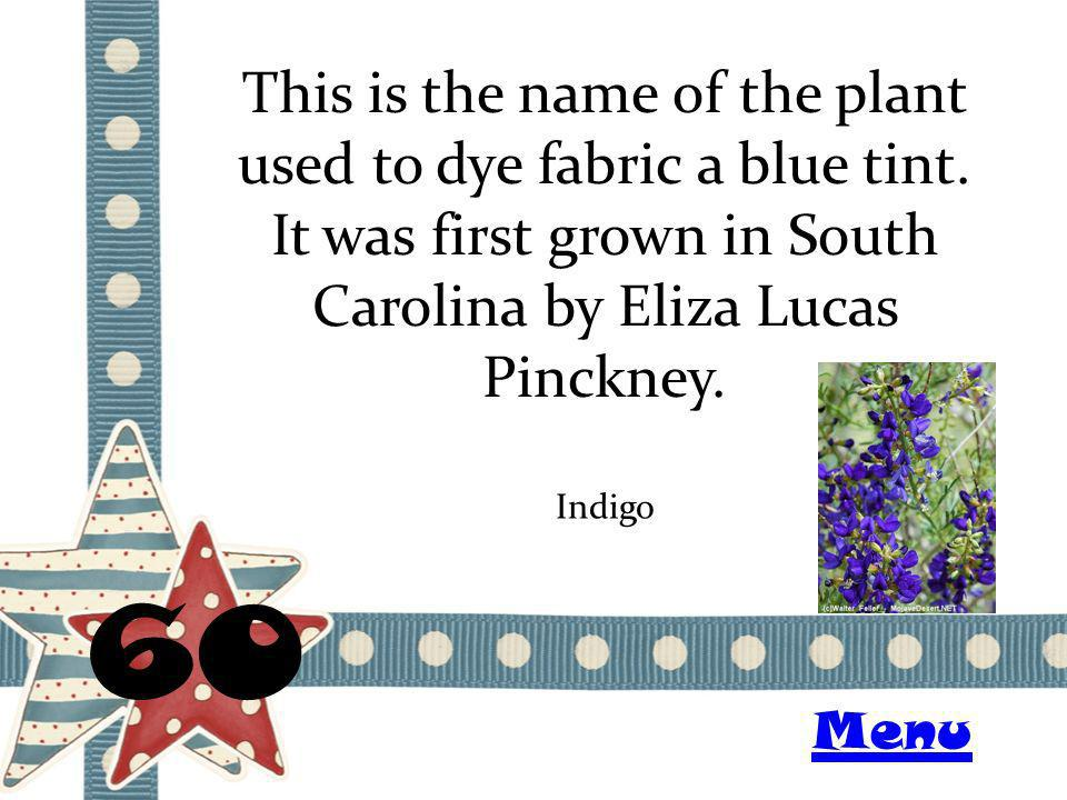 This is the name of the plant used to dye fabric a blue tint.