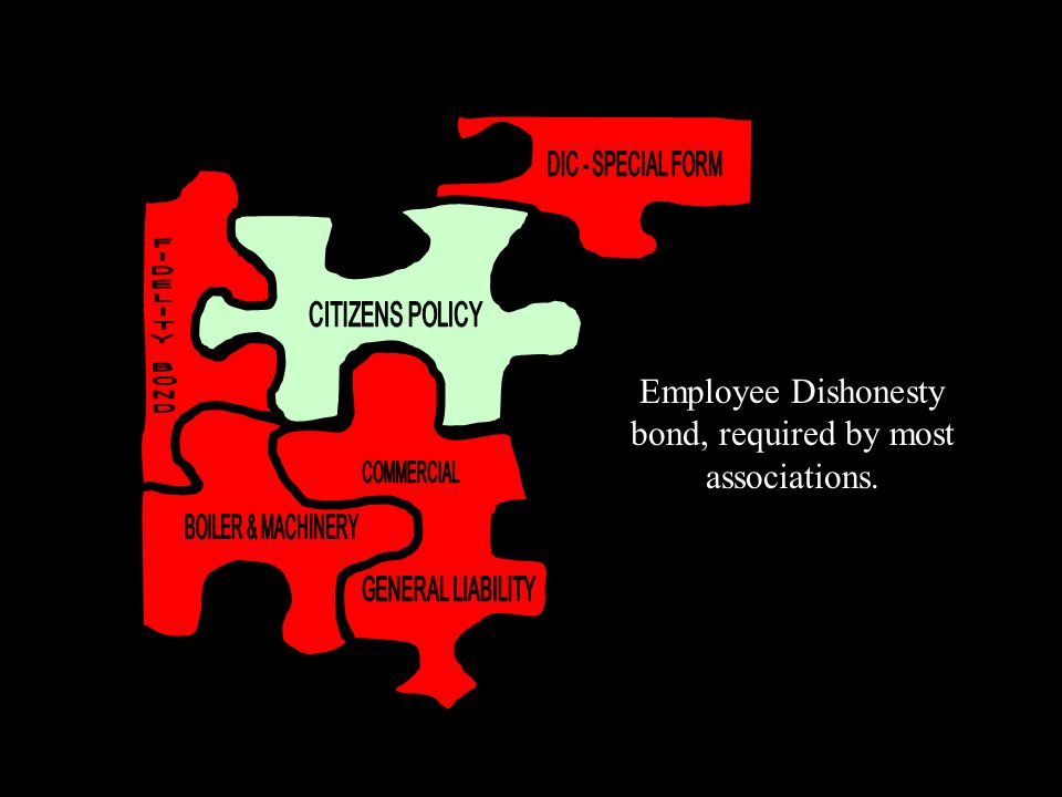 Employee Dishonesty bond, required by most associations.
