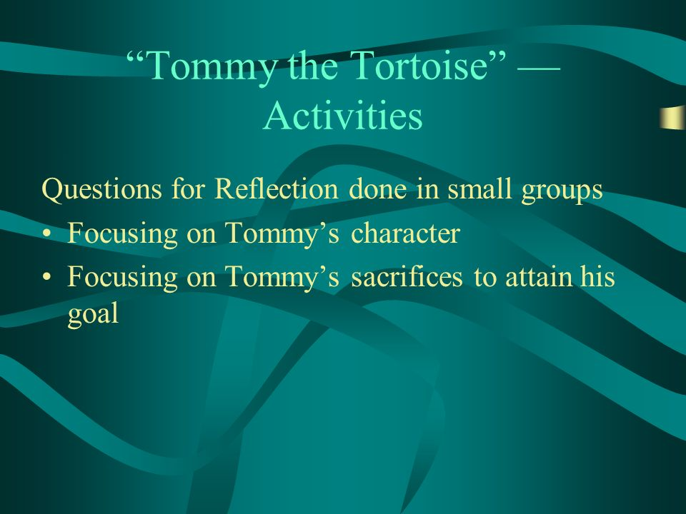 Tommy the Tortoise Activities Questions for Reflection done in small groups Focusing on Tommys character Focusing on Tommys sacrifices to attain his goal