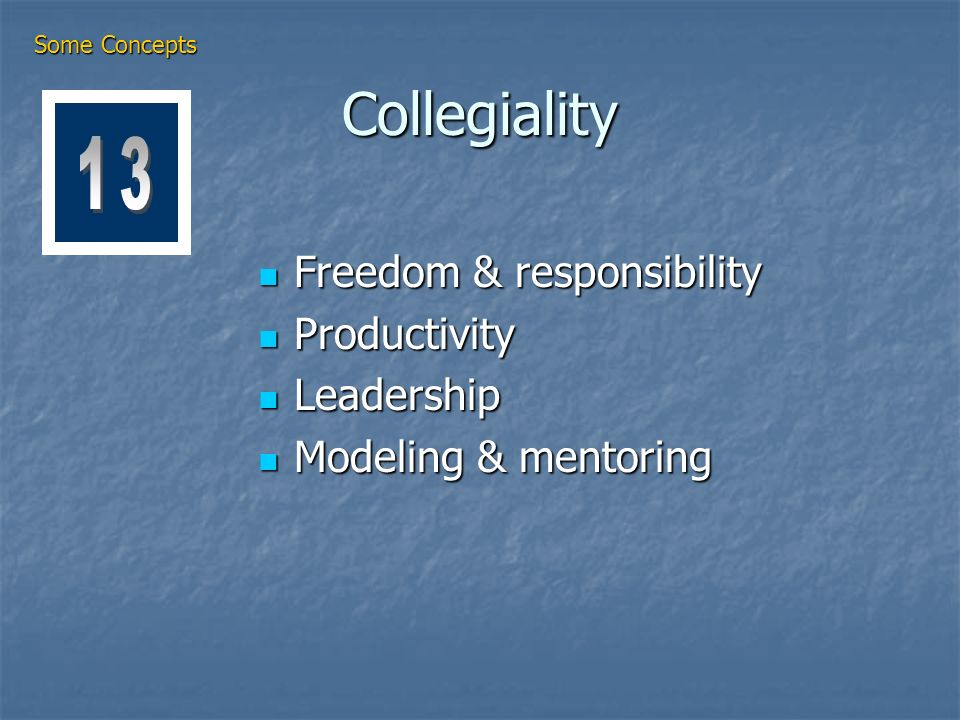Collegiality Freedom & responsibility Freedom & responsibility Productivity Productivity Leadership Leadership Modeling & mentoring Modeling & mentoring Some Concepts