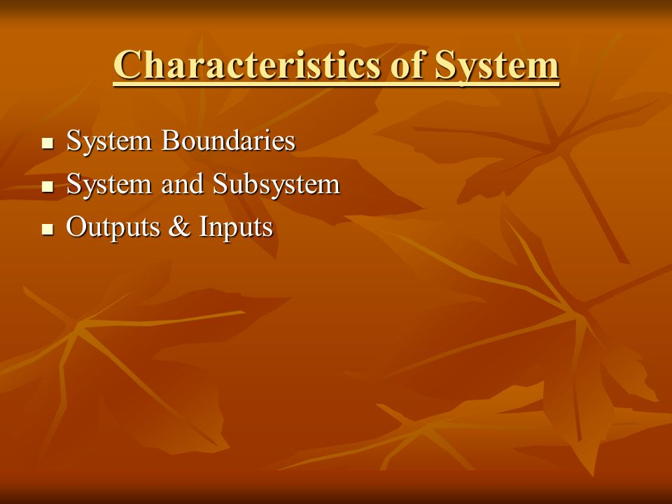 Characteristics of System System Boundaries System Boundaries System and Subsystem System and Subsystem Outputs & Inputs Outputs & Inputs