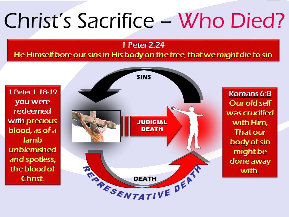 1 Peter 1:18-19 you were redeemed with precious blood, as of a lamb unblemished and spotless, the blood of Christ.