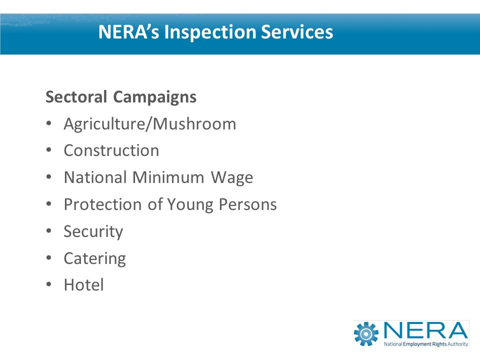Sectoral Campaigns Agriculture/Mushroom Construction National Minimum Wage Protection of Young Persons Security Catering Hotel NERAs Inspection Services