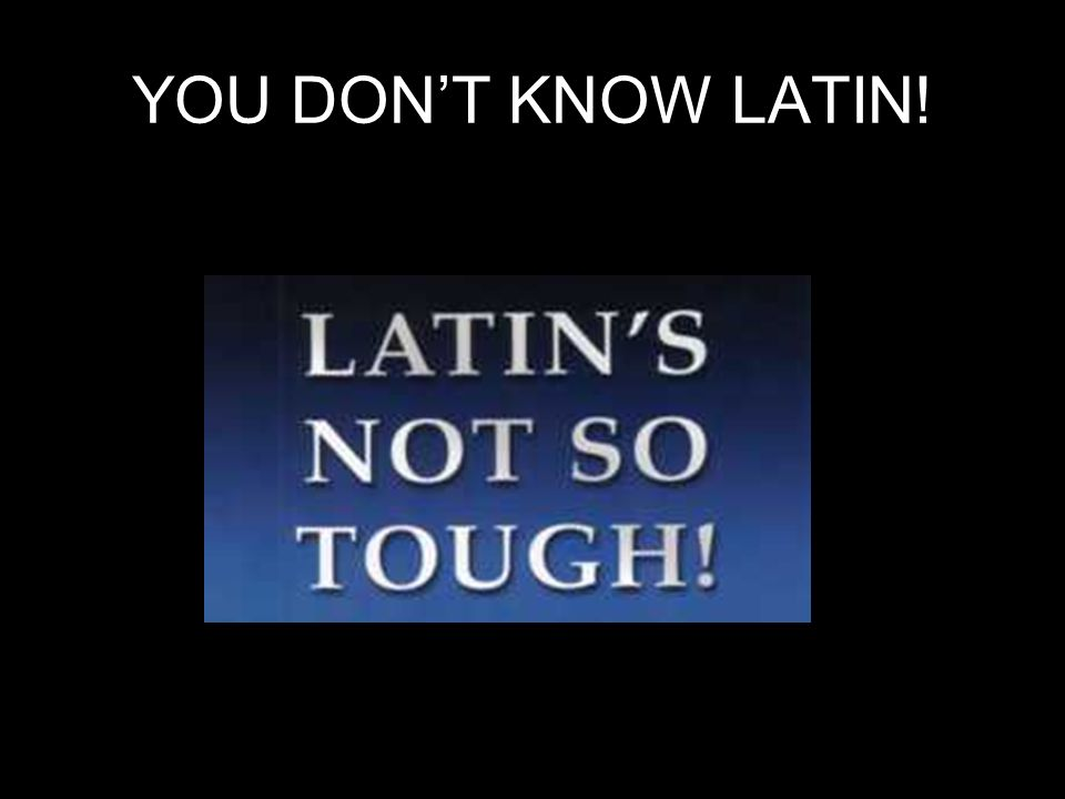 YOU DONT KNOW LATIN!